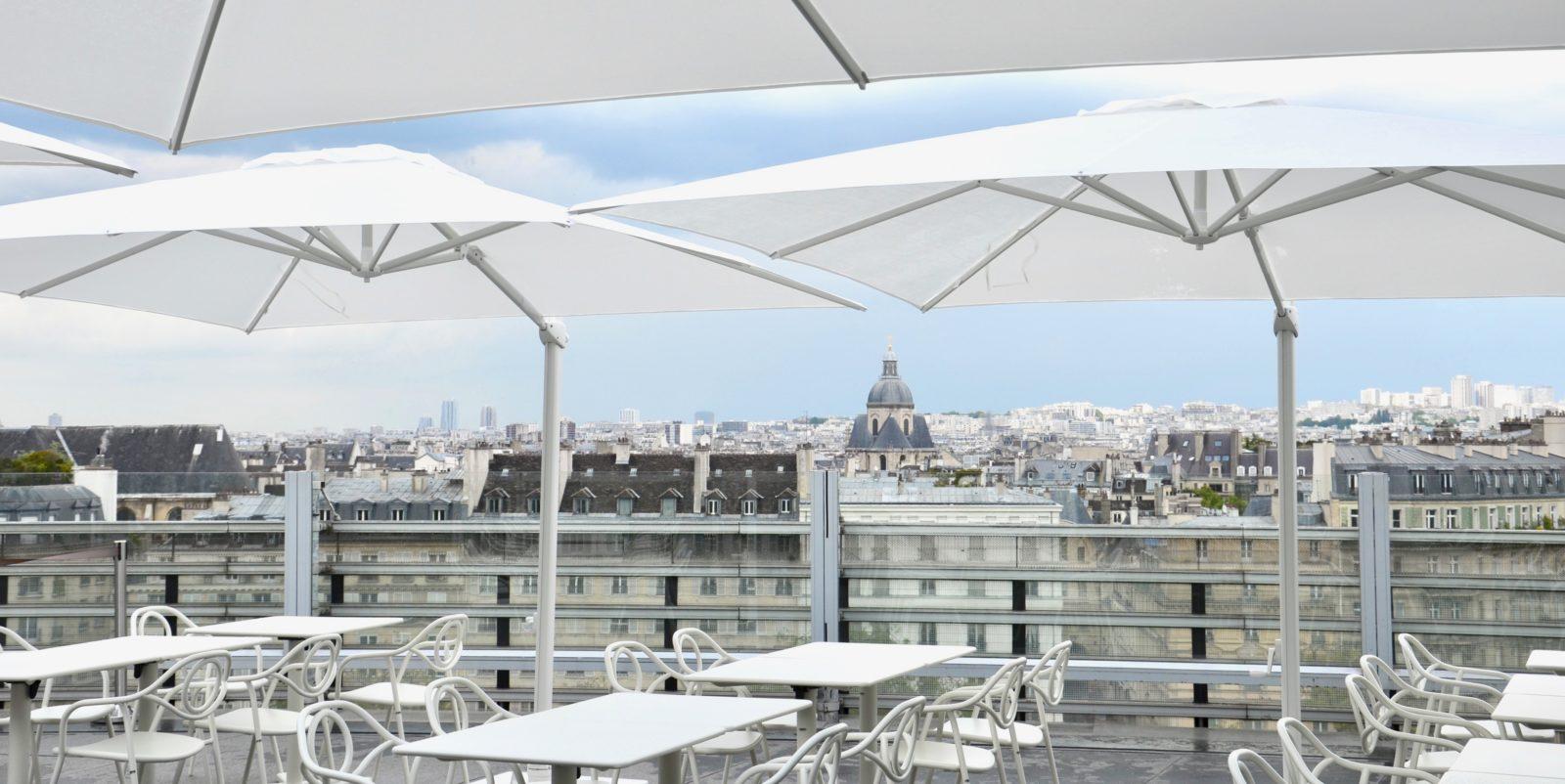 Rooftop institut du monde arabe paris BUXUS